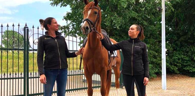 Paardrijden is een puzzel